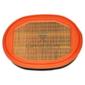 Manitou  CF29550 Air filter