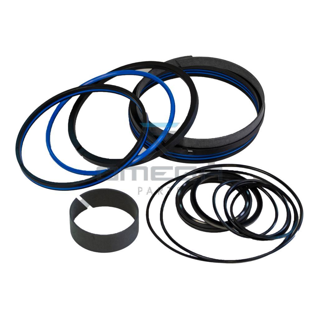 JLG 1001174325 Seal kit